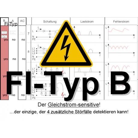 FI-Typ B (Ugrade-Kit für Plug & Play -Solarmodule)