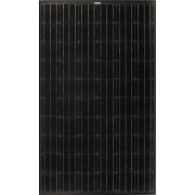 Suntech 320 black modules solaires