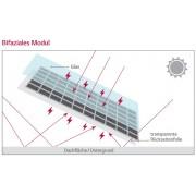haute performance module solaire LG NeoN 2 Bifacial 300 Watt Mono